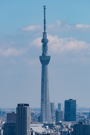 Tokyo Skytree view from World Trade Center Building