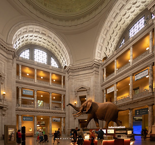 Smithsonian National Museum of Natural History