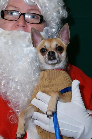 Chico and Santa (aka Rita)