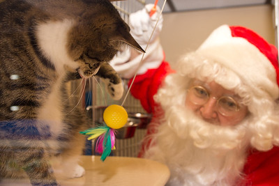 Santa visits the adoption center