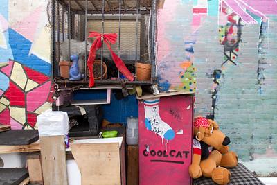 River/Wythe Metropolitan Avenue kitty colony
