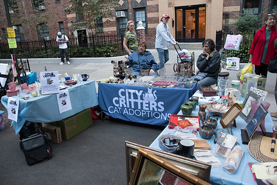 City Critters table at the London Terrace street fair 2016