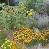 Best Educational Garden (School #50 Green Thumbs)