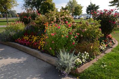 Prize-winning gardens in the Flower City Garden Contest, 2014.