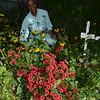 Garden of Distinction (Melrose Clarke)