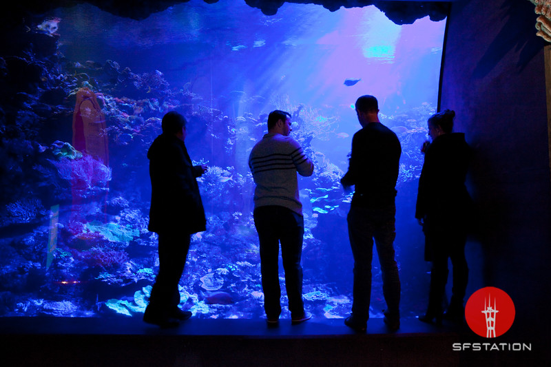 Feel the Force Nightlife, Dec 7, 2017 at the California Academy of Sciences