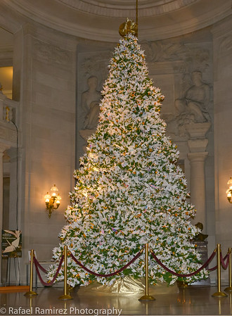 World Tree of Hope Lights
