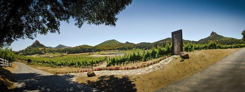 Malibu Wines site visit