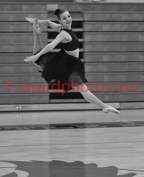 2015 CHS Dance - State Preview
