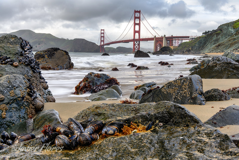 Marshall Beach, San Francisco