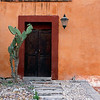 Door with Cactus