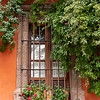 San Miguel De Allende Window with Flowers