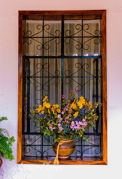 Window with flowers El Quelite Sinaloa Mex