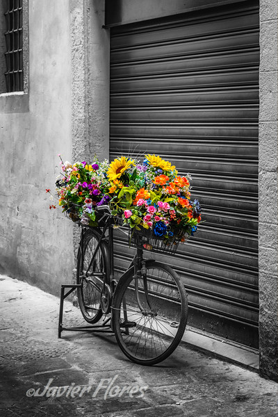 Bike Cycle with Flowers