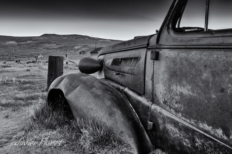 Bodie Coupe