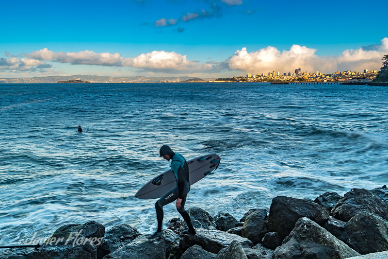 Surfer in the San Francisco Bay