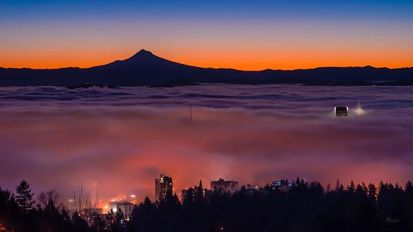 Ocean of Fog