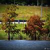 2014-10-15_IMG_6646_ Pinellas Park,Fl