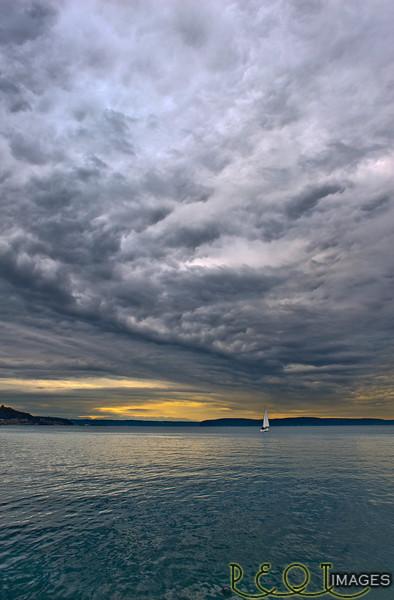 Tacoma Waterfront Vert