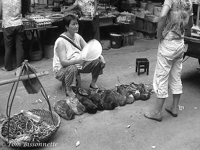 Duck Vendor