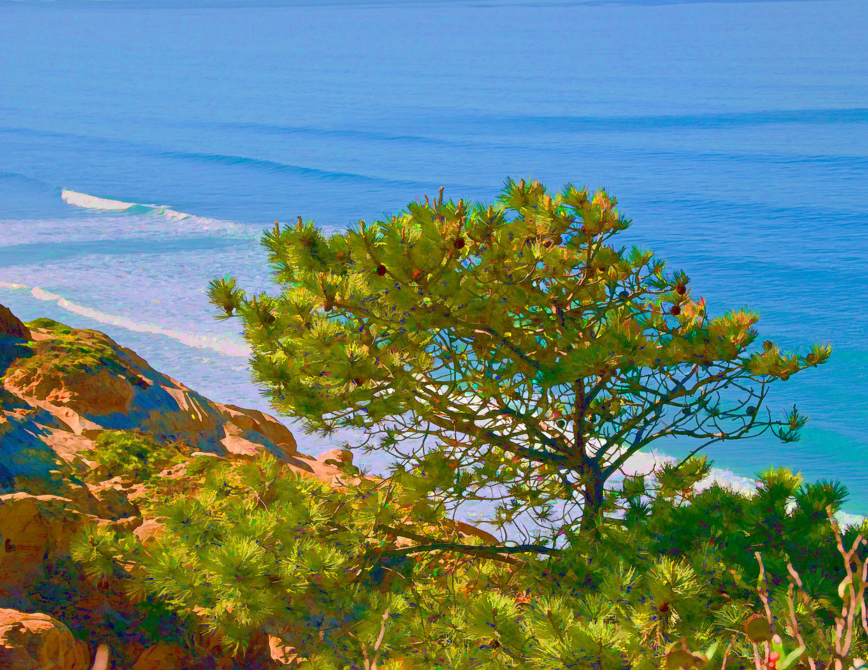154  Torrey Pine and Cliffs painted