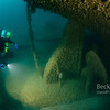 Scuba Diver checking out propeller on the city of Detroit shipwreck