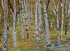 Aspen-Voss, (AESFV13-06), 33x23 on paper