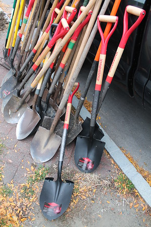 City of Troy Plants 50 Trees with Community Partners