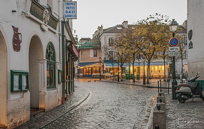 Les Oiseaux – Montmartre, Paris - November, 2004