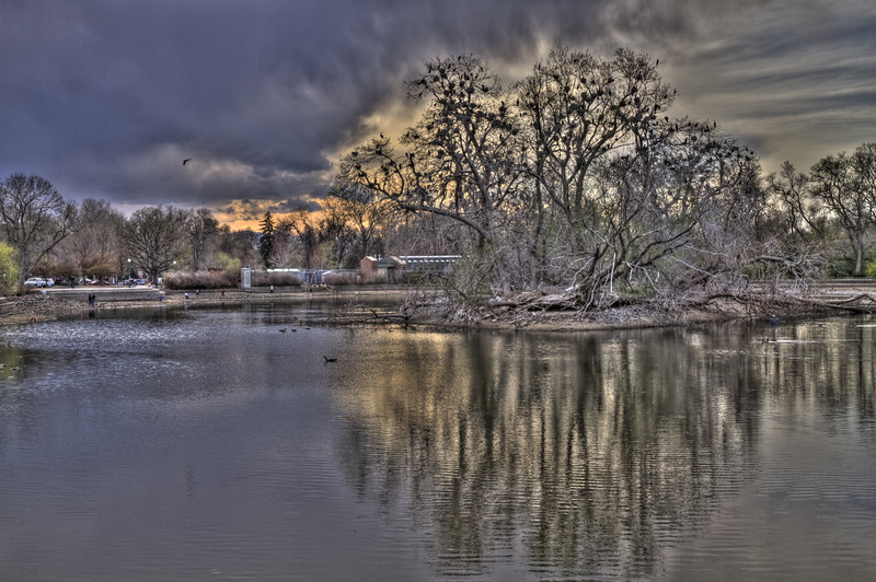 "I call this the ""Bird Tree"" at City Park.  This is an unabashedly HDR photograph with two stops separating the three images.  The textures in the sky were fun and the way the open sky haloed the tree was too cool to pass up and fit into HDR so well I couldn't resist."