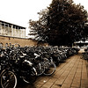 600,000 bikes