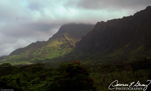 2008 Hawaii