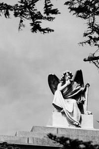 Angels 016