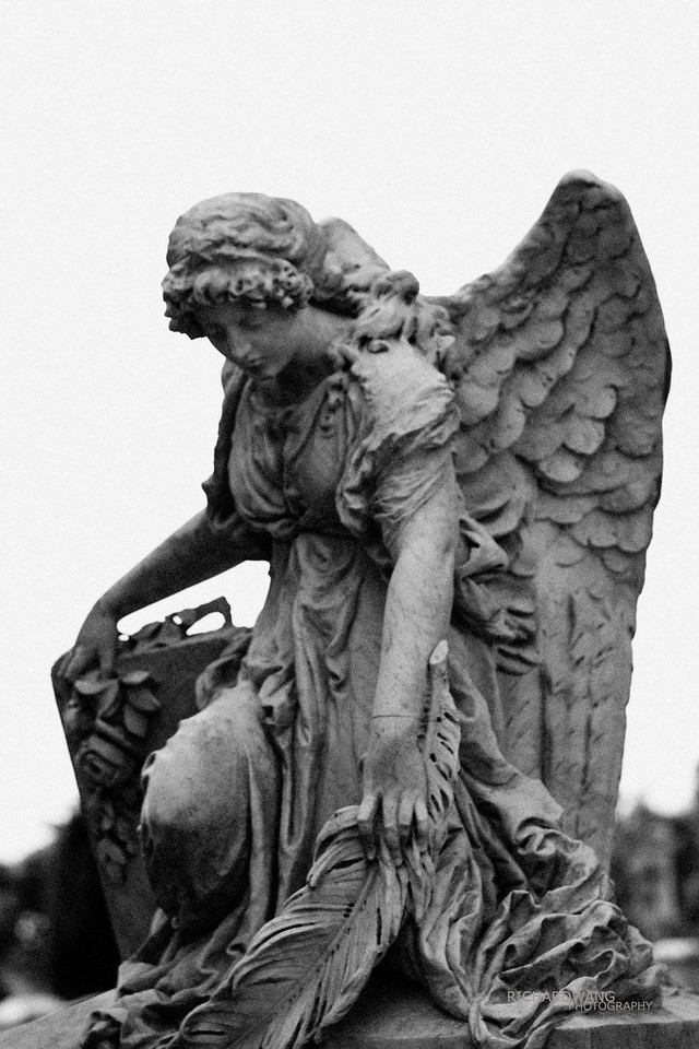 Angels 020