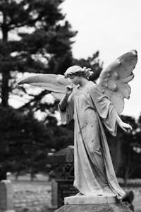 Angels 028
