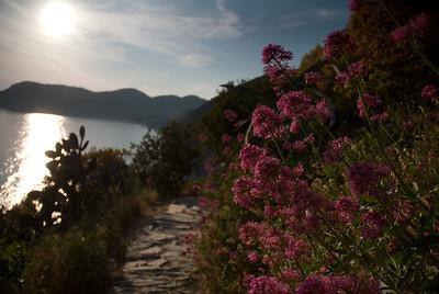 Parco nazionale delle Cinque Terre-Liguria