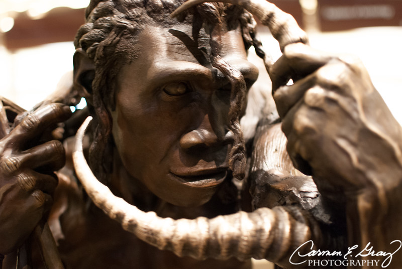 Smithsonian Museum of Natural History ...Taken April 4, 2012