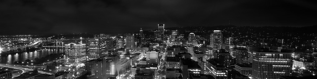 Portland City View