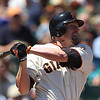 """<a href=""""http://giants.mlb.com/team/player.jsp?player_id=333492#gameType='L'§ionType=career&statType=1&season=2012&level='ALL'"""">Aubrey Huff</a> - #17 - 1B<br /> Bats Left - Throws Right, Height: 6'4"""", Weight: 225, Born: Dec 20, 1976"""