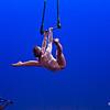"Photo by Attic Floc <br /><br /> <b>See event details:</b> <a href=""http://www.sfstation.com/cirque-noveau-devil-fish-e1130571"">Cirque Noveau</a>"