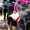 "Photo by Gabriella Gamboa<br /><br /><b>See event details:</b> <a href=""http://www.sfstation.com/million-dog-march-e1932691"">Million Dog March</a>"