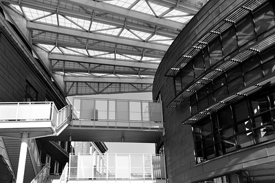UC March 2012 082 bw