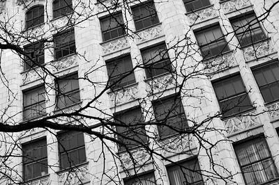 city pics_4110November 2011