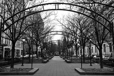city pics_4090November 2011