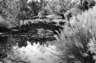 spring grove bridge october 2011 bw