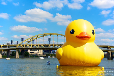 Pittsburgh Point State Park Rubber Duck Project