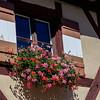 Nuremberg Colors