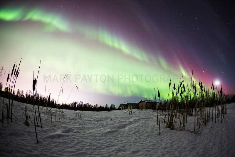 Aurora Borealis       The Aurora over Anchorage and Elmendorf AFB, Alaska  Canon 5D MK III Canon EF 15mm f/2.8 Fisheye Anchorage, Alaska