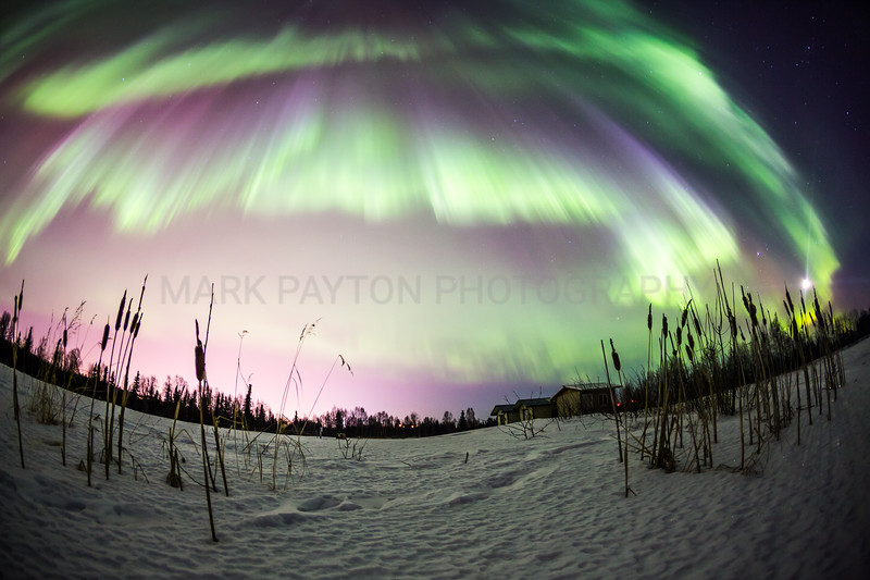 Northern Lights      The Aurora Borealis putting on an awesome overhead display above Anchorage and Elmendorf AFB, Alaska  Canon 5D MK III Canon EF 15mm f/2.8 Fisheye Anchorage, Alaska