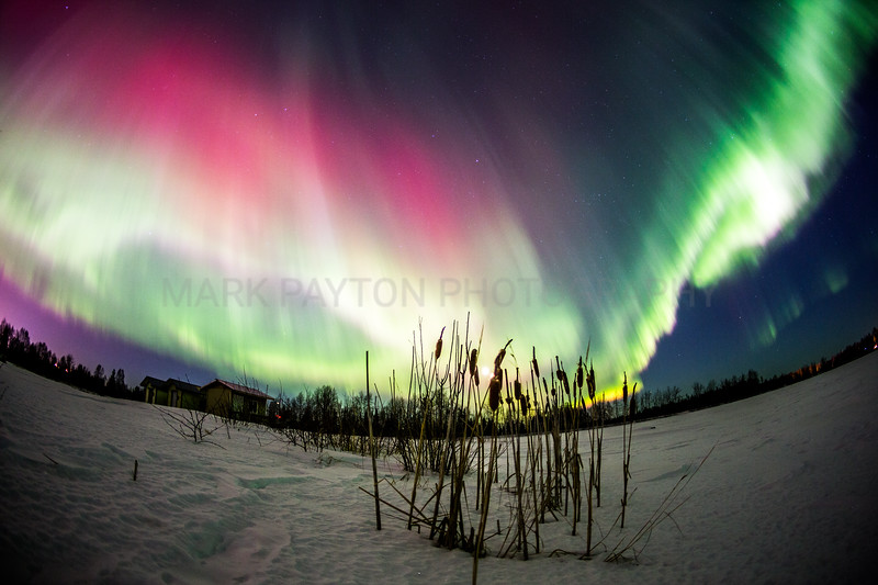 Aurora Splendor<br /> <br /> Canon 5D MK III<br /> Canon EF 15mm f/2.8 Fisheye<br /> Anchorage, Alaska